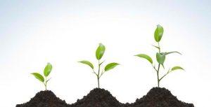 ブログで成長を確認できる